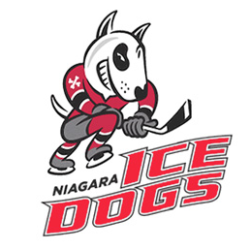 Unifor Night With The Niagara Ice Dog's