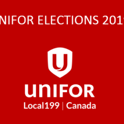 Elections Report – March Elections